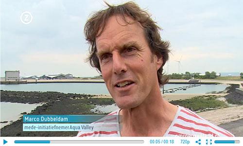 Zeeland krijgt eigen 'Silicon Valley' voor aquacultuur
